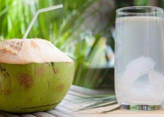 7 Manfaat Daging Kelapa, Cocok untuk Diet