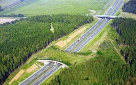 6 Fakta Unik Negara Belanda